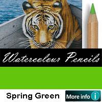 WC PENCIL PRISMACOLOR SPRING GREEN cod.WC2913