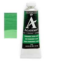AO PERM GREEN LIGHT 37ML T162
