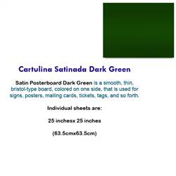 CARTULINA SATINADA DARK GREEN 10042