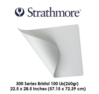 PAPER BRISTOL SHEET 22.5 x 28.5 inches 100LB 300 SERIES 345-2