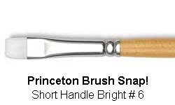 BRUSH 9850BS6 6 SNAP BRIGHT 9850BS6